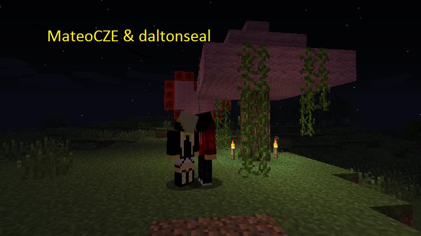 MateoCZE & daltonseal  1